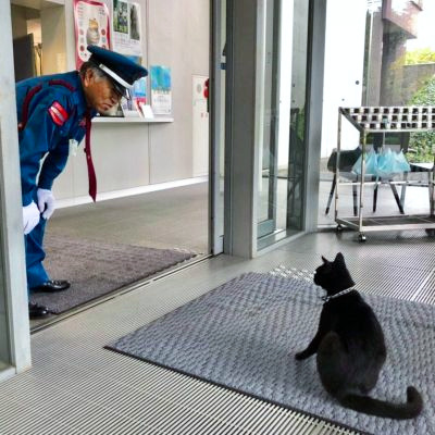 【感動】猫と警備員さん、2カ月ぶりに再会 ネッコ「マスク姿でも余裕で分かったニャ~」
