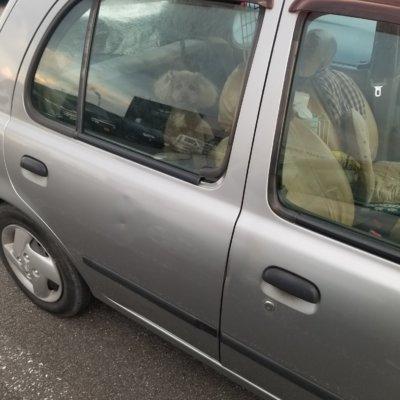 【ペット車内放置】パチ屋の駐車場で車内に取り残されたイッヌが発見されてしまう。。