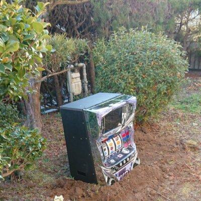 【悲報】帰宅したら庭にディスクアップが埋まっている…否、生えてきたw