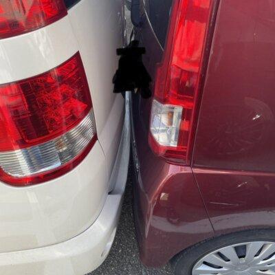 【事故】パチ屋の駐車場で車同士がキスしてるんやが…